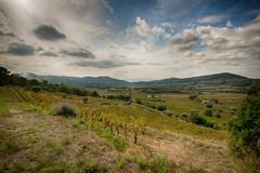Landscape near Le Castellet (Classicpixel (Eric Galton) Photography Portfolio) Tags: lecastellet vignoble vineyard paysage landscape nikon d800e nikon1635mmf4 ericgalton classicpixel clouds nuages storm tempête