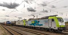 26_2018_09_22_Grosskorbetha_1275_806_LEUNA_6185_578_ITL_CAPTRAIN_Schneller_Grüner_Hamburg (ruhrpott.sprinter) Tags: ruhrpott sprinter deutschland germany allmangne nrw ruhrgebiet gelsenkirchen lokomotive locomotives eisenbahn railroad rail zug train reisezug passenger güter cargo freight fret groskorbetha abellio abrm akiem atlu brll captrain ctl itl leuna meg rhc txltxlogistik 0037 1223 1266 1275 1442 6185 6187 6193 9442 magirus feuerwehr wasserturm tunnel unterführung dampfziegelei logo natur outddor kanaldeckel