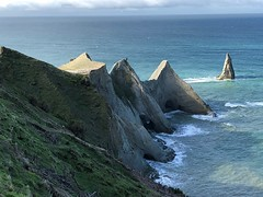 Sea Stacks at Cape Kidnappers, New Zealand (Craigs Travels) Tags: seastacks napier hawkesbay clifton gannet colony capekidnappers newzealand pacific birds