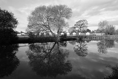 Slow Down (JamieHaugh) Tags: clevedon somerset england uk gb britain outdoors sony alpha ilce7rm2 a7rii zeiss blackwhite bw black white monochrome nature reflections sky clouds water lake trees caravans fence slow peaceful quiet serene grass landscape autumn homes buildings warrens