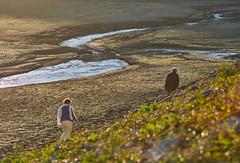 The 2018 drought, Lake Chaillexon (pierre_et_nelly) Tags: doubsriver2018drought doubsriver riverdoubs 2018drought doubs drought sécheresse 2018 lakechaillexon lacdechaillexon lac chaillexon lacdesbrenets franchecomté franchecomte mud