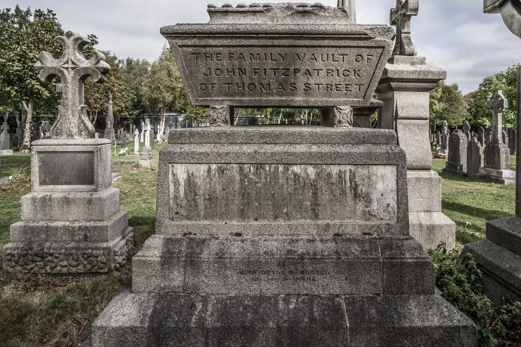 SEPTEMBER 2018 VISIT TO GLASNEVIN CEMETERY [ I USED A BATIS 25mm LENS AND I EXPERIMENTED WITH CAPTURE ONE]-144796