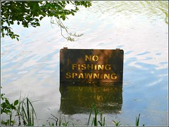 Sign for Anglers .. (** Janets Photos **) Tags: uk hull bransholmenaturereserve lakes ponds signs anglers fishermen