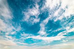 White Cirrus Clouds on the Blue Sky (wuestenigel) Tags: cirrus lowangle blue cloud white sky outdoor nature summer day nopeople noperson keineperson natur outdoors drausen sommer fairweather schöneswetter daylight tageslicht himmel scenic szenisch desktop bright hell high hoch weather wetter light licht landscape landschaft sun sonne space raum color farbe heaven idyllic idyllisch downy flaumig