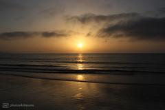 fuerteventura 2018 - 6 (photos4dreams) Tags: fuerteventura urlaub holiday island isle sbhtarobeach costacalma 102018 92018 photos4dreams p4d photos4dreamz sun beach meer sea strand sonne