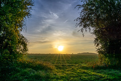 Sunrise, Ampney Crucis, Cotswolds (alexjorgejackson) Tags: sunrise ampney crucis cotswolds uk england sun sony a6000 fields nature sky clouds beautiful sigma early morning autumn summer home