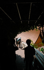 Don't follow my fate (lorenzoviolone) Tags: finepix fujix100s fujifilm fujifilmx100s x100s mirrorless travel:southeastasia=2017 bangkok krungthepmahanakhon thailand th fav10