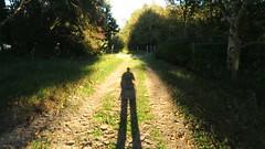 Disappearance (Elisa1880) Tags: den haag the hague solleveld nederland netherlands shadow schaduw ik me