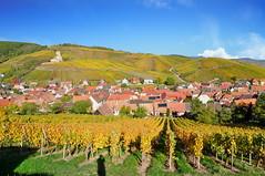 Katzenthal (Haut-Rhin, F) (pietro68bleu) Tags: vignoble vigneto weinberg alsace couleursautomnales chateau wineck village