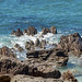 View of rocky shoreline from Mount Maunganui trail, New Zealand