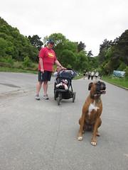 IMG_2427 (dastridc) Tags: loveparkrun porirua parkrun park sport running bothamley newzealand