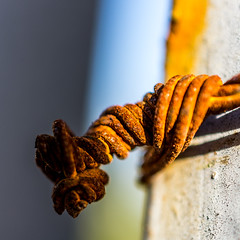rusty knot / time, the only conqueror (Özgür Gürgey) Tags: knotsobad 2013 40mm bahçeşehir d7100 nikon knot macro smileonsaturday square yellow istanbul