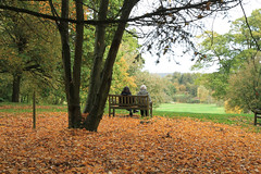 Peaceful view, Yorkshire Arboretum, England. (Nigel L Baker) Tags: people yorkshire landscape sit sitting seated