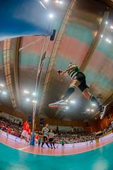 _FPV3104 (américodias) Tags: viana365 benfica sporting voleibol fpv