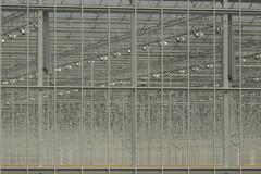 Kassencomplex - 's-Gravenzande (Jan de Neijs Photography) Tags: sgravenzande warenhuis horticulture kas tuinbouw tamron150600 tamron 150600 tamron150600g2 g2 zuidholland nederland holland westland hetwestland nederlandsestreek deglazenstad greenehouse southholland nl breejedurp glas dieniederlande tomatenkwekerij noordlandseweg glastuinbouw tomatenteler lijnenspel lijnen