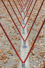 Strength (Binacat) Tags: canon eos 750d digital color münster autumn red brown leaves rope seil stark strong rot braun blätter herbst