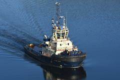 Ayton Cross - Erskine Bridge - 06-10-18 (MarkP51) Tags: aytoncross erskinebridge riverclyde scotland tug ship boat vessel nikon d7100 d7200 nikon70200f4vr nikonafp70300f4556fx kodachromeii slide film scan sunshine sunny maritimephotography
