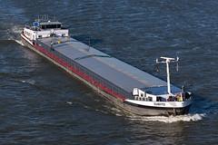 GMS Subito - ENI 2317285 (5B-DUS) Tags: gms subito eni 2317285 schiff binnenschiff vessel barge ship rhein