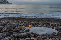 Filament (frattonparker) Tags: afsnikkor28300mmf3556gedvr btonner isleofwight lightroom6 nikond810 raw frattonparker englishchannel beach alumbay theneedles