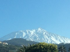 IMG_1693 (rugby#9) Tags: outdoor canaries canaryislands tenerife mountteide mountains bluesky tree trees snow sky landscape mountain mountainside