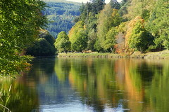 Autumn Reflections (eric robb niven) Tags: ericrobbniven scotland dunkeld dundee perthshire landscape rivertay springwatch