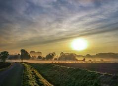 Herbstnebel am Niederrhein (kittimat62) Tags: nebel nebelschwaden fog herbst niederrhein sonnenaufgang sunrise grefrath autumn sonne himmel landschaft niers ngc huawei p10 huaweip10 leica