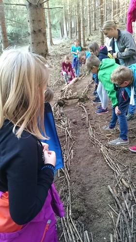 Waldpädagogik-Tag