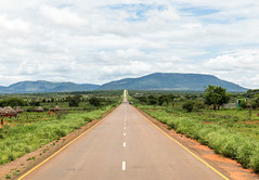 A section of the road from Moyale border leading into Mega town, on the Ethiopian side of the Nairobi-Addis Ababa road corridor. (African Development Bank Group PROJETCS) Tags: kenya ethiopia nairobi addis ababa highway project 2018