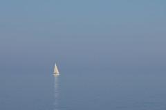 no horizon (Fotokyoto) Tags: denmark forest autumn aarhus sea ocean harbor sailing yacht
