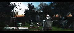 A quiet place (3XIS) Tags: 22769 bats blog blogger blogging creepy exis florix gacha garden gothic graves graveyard landscape littlebranch photography picture salem secondlife spooky thearcade tlc vulture