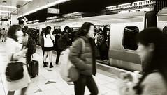Well packed (DameBoudicca) Tags: tokyo tokio 東京 japan nippon nihon 日本 japón japon giappone shibuya 渋谷区 渋谷 railway järnväg eisenbahn ferrocarril chemindefer ferrovia 鉄道 tåg train zug tren treno 列車 rushhour rusningstid stoszeit heuredepointe horapunta oradipunta ラッシュ時