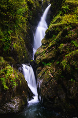 Aira Force (Rico the noob) Tags: 2018 rock d850 lakedistrict 2470mm nature water outdoor 2470mmf28 rocks leaves waterfall uk published dof longexposure landscape stones