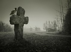 Scary background for Halloween. Old grave with a cross and the r (my-way-love) Tags: bychipvnimageuploader autumn background black celebration cemetery cross crow dark dead death design dramatic dusk eerie evil fantasy fear fog funeral ghost gothic grave graveyard gray grim grunge halloween haunted holiday horror landscape mill mystery nature night october old raven scary scene silhouette spooky stone terrible tomb tombstone