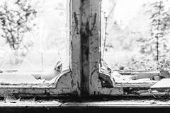 13/30 2017/11 (halagabor) Tags: bnw blackandwhite monochrome exploration exploring explorer urban urbex urbanexploration urbanexploring urbexphotography urbexphotos old lost lostplaces decay derelict devastation forgotten nikon d610 castle window vintagelens manualfocus