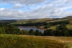 Goyt Valley (Jen Buckle) Tags: errwoodreservoir goytvalley shiningtorascent grass sky clouds water reservoir goyt trees scenery landscape nikon nikond7500