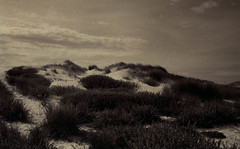 Paths to light (Rosenthal Photography) Tags: dünen dänemark analog 20180805 color ff135 strand juli rodinal12520°c18min c41 houvig urlaub asa200 olympus35rd sommer fujisuperia200 danmark denmark mood landscape beach dunes storm sea northsea clouds summer july olympus olympus35 35rd fzuiko zuiko 40mm f17 fuji superia rodinal 125 epson v800 paths light