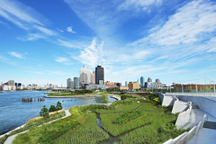 Windy day (witajny) Tags: landscape lanscapes landscapephotography architecture landscapearchitecture sky skyline skyscrapers river eastriver longislandcity longislandphotographers longislandshots park trees hunterspointsouthpark newyork curves perspective buildings clouds cloudysky grass wideangle city water