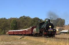 Charging Into The Creek (Mittens_97) Tags: steam steamtrain steamlocomotive bety bb1814 bb18¼1079 queensland queenslandrail arhsqld australia green
