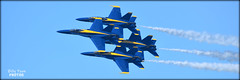 "The Blue Angels ""Diamond 360"" Fleet Week 2018 (billypoonphotos) Tags: diamond 360 formation 2016 fleet week blue angels navy jets f18 flying squadron billypoon billypoonphotos san francisco california bay area nikon 55300mm lens news photo photographer photography picture photos planes hornet united states outdoor airplane aircraft vehicle 2018 d5500 fort mason"