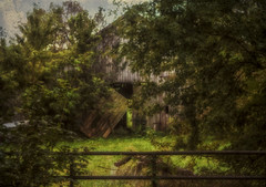 Fallen, forgotten, and lost to time. (Southern Darlin') Tags: kentucky barn texture art photography photo manipulation edited