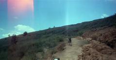 Dog on the Trail (TAZMPictures) Tags: madagascar kodak vintage no1afoldingpocketkodak modeld landscape