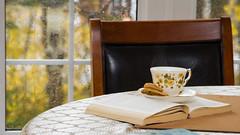 RainyReadingSundays! (hynes.jane) Tags: tea rain window reading sunday relax