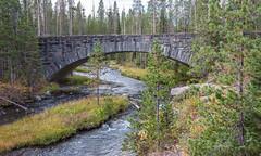 Crawfish Creek, Yellowstone National Park (Rick Knepper) Tags: fujifilmgfx50s gf45mmf28rwr
