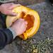 A man chooses seeds from a pumpkin