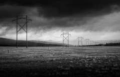 over and out (andy_8357) Tags: ilcenex 6000 alpha a6000 sony sigma 60mm f28 dn art south park colorado 285 electrical lines power black white blanco y negro landscape outdoors grass atmosphere mood atmospheric strong moody bw blanc et noir beautiful
