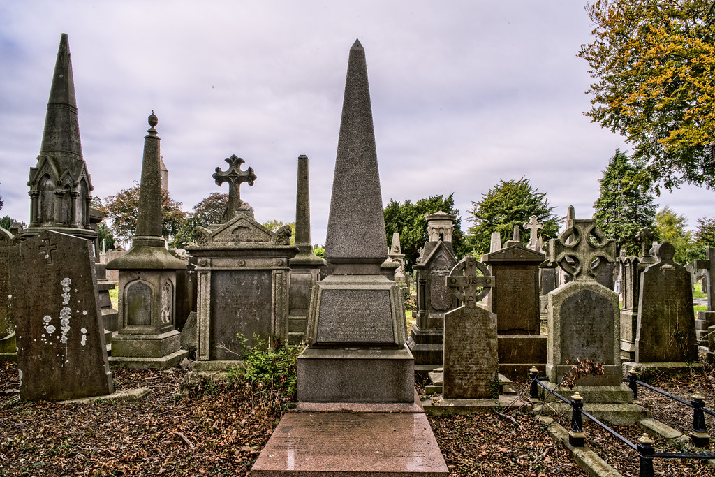 SEPTEMBER 2018 VISIT TO GLASNEVIN CEMETERY [ I USED A BATIS 25mm LENS AND I EXPERIMENTED WITH CAPTURE ONE]-144831