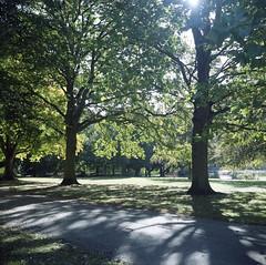 Agifold Autumn (DH73.) Tags: abington park northampton autumn agi agilux agifold 6x6 fuji pro400h