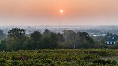 Eye in the Sky (Michael Dittrich) Tags: sunrise burningsky skyfire mist nebel morning mystic
