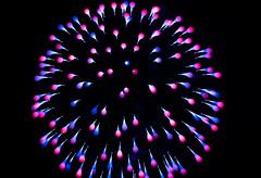 blooming fireworks (pbo31) Tags: sanfrancisco california nikon d810 color night dark black city october 2018 boury pbo31 fireworks bokeh aquaticpark lightstream motion blur gum drops