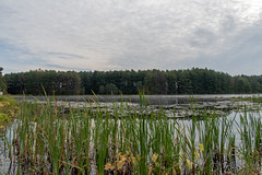 ashleyreservoir2018-134 (gtxjimmy) Tags: ashleyreservoir nikond7500 nikon d7500 newengland holyoke massachusetts autumn fall watersupply reflections reflection hdr